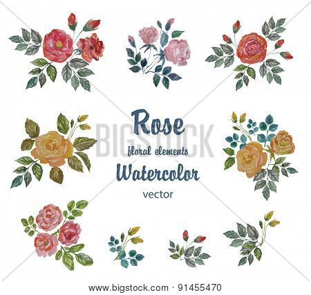 Watercolor Vector Set with Roses Branches for Decoration.