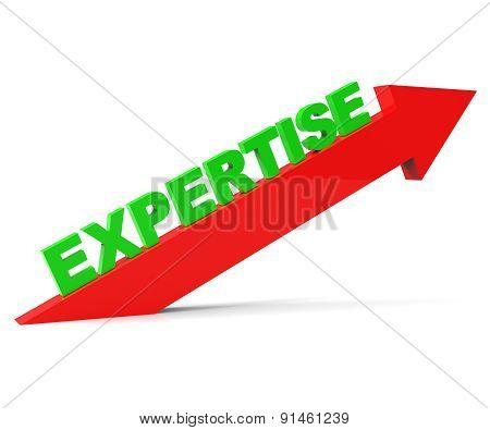 Increase Expertise Indicates Skills Progress And Advance