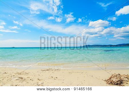 Maria Pia Beach On A Clear Day In The Springtime