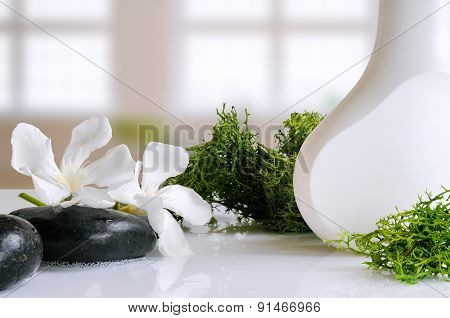 Beauty Product With Seaweed In A Bath