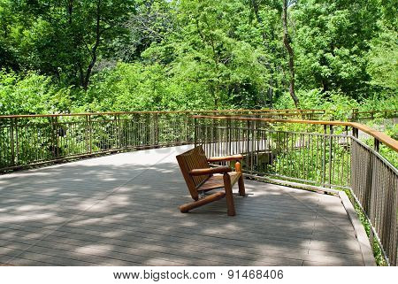 Park Deck Area in Woods
