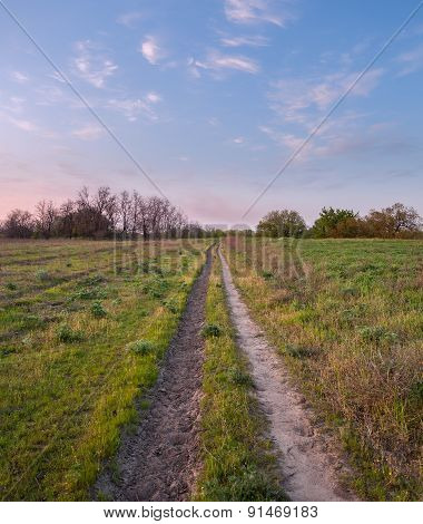 Beautiful sunset. Spring landscape with trail, trees, blue sky and clouds in Ukraine