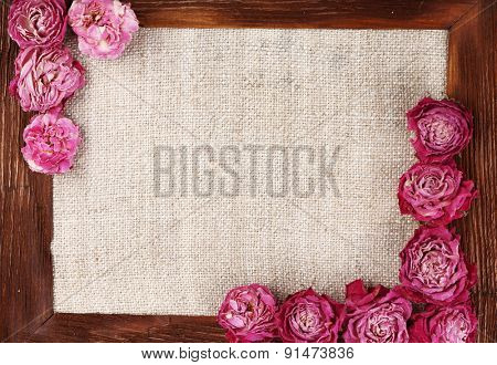 Frame of beautiful dry flowers with frame close up