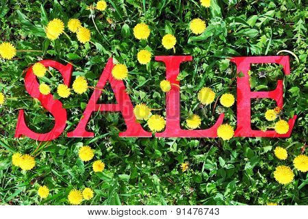 Sale on green field background