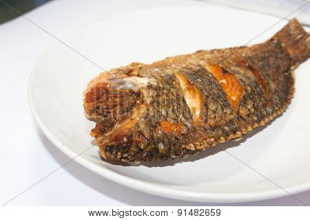 Fried Tilapia Fish