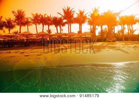 Tropical island beach view
