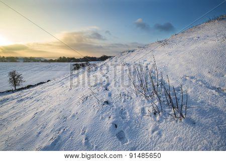 Beautiful Snow Covered Sunrise Winter Rural Landscape