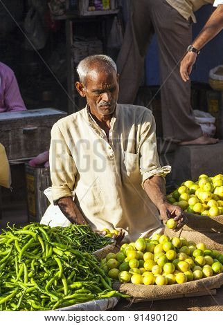 Man Selling Vegetables At Chawri Bazar In Delhi, India