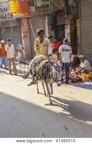 Donkey Rider Transports Goods At Chhawri Bazar