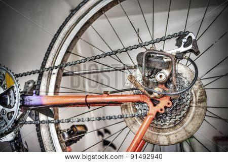 Bike Rear Wheel In Hdr