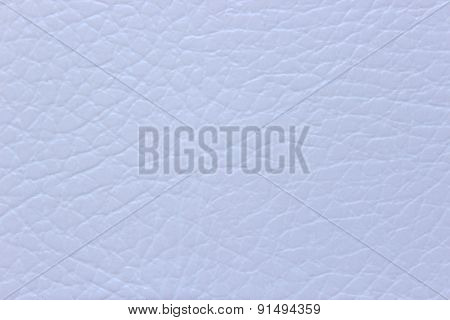 White Background Leather