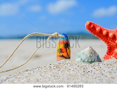 Shell, Starfish And Necklace Stuck In The Sand