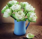 pic of lillies  - still life flowers White water lilly in vase - JPG