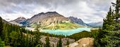 image of rocky-mountains  - Panoramic view of Peyto lake and Rocky mountains Alberta Canada - JPG