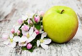 image of apple blossom  - apple and apple tree blossoms on a old wooden table - JPG