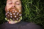 foto of tall grass  - a sleeping hipster lying in tall grass with lilacs in his epic beard taking a nap toned with a retro vintage instagram filter and light leaks  - JPG