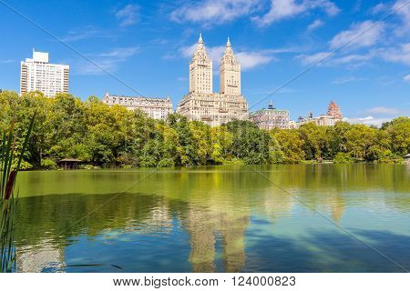 summer landscape in the Central park, New York, USA