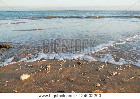 Beach with many shells and waves in Australia ** Note: Visible grain at 100%, best at smaller sizes