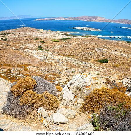 Temple  In Delos Greece The Historycal Acropolis And Old Ruin Site