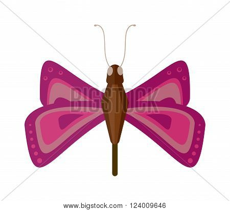 Butterfly isolated vector. Butterfly isolated on white background. Butterfly vector illustration. Colorful butterfly isolated on white background.