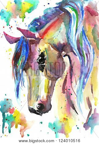 Horse head. Color bright watercolor illustration. Paint