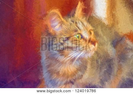 real photo of a cat modified in a image software to look like a painting