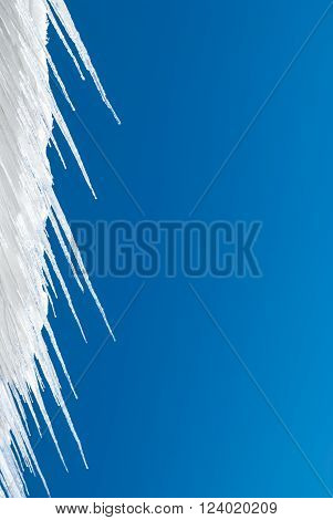 Icicles contrasted against a solid blue sky background.