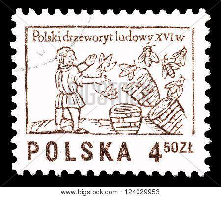 POLAND - CIRCA 1974 : Cancelled postage stamp printed by Poland, that shows Bee keeper.