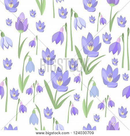 Early spring purple crocus and snowdrops nature beauty flowers seamless pattern vector. Crocus snowdrops flower color and purple crocus bouquet petal natural bloom. Purple crocus and snowdrops.