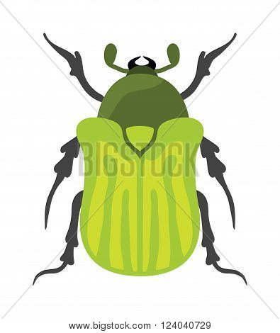 Beetle flat insect bug in cartoon style vector. Simple beetle insect wildlife. Cartoon bug beetle color nature insect. Vector beetle cartoon style bug.