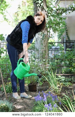 Happy casual dressed woman in yard gardening with watering can