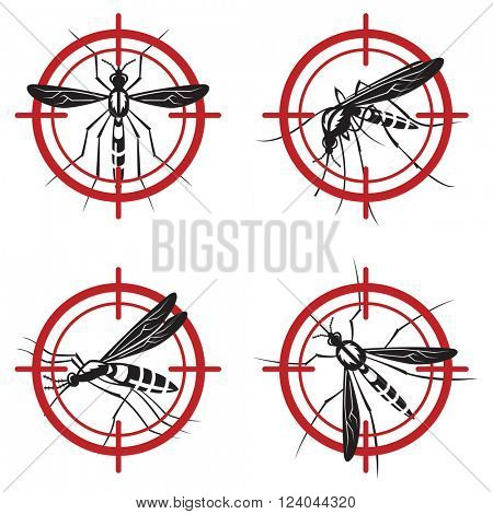 collection of four mosquito prohibited sign