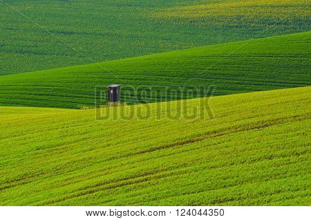 Rural landscape with green grass field and wooden hunting shack , South Moravia, Czech Republic
