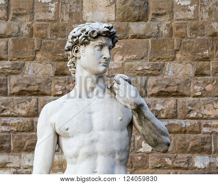 The statue of David by Michelangelo on the Piazza della Signoria in Florence Italy. Concepts could include Art History Beauty Travel others.