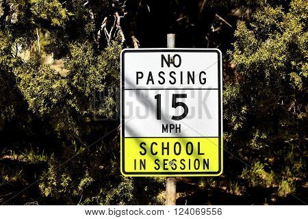 Sign posted on pipe near school saying no passing speed limit 15 school in session with trees in the background