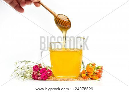 golden honey and wooden stick against white background