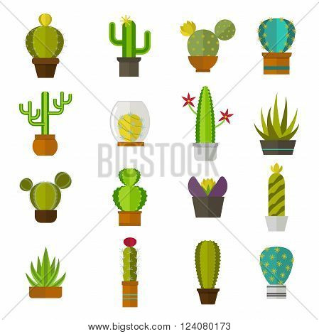 Green desert plant nature cartoon cactus and mexican summer cute cartoon cactus. Cartoon cactus tropical plant traditional west flower. Cute cartoon cactus collection flat nature vector illustration.