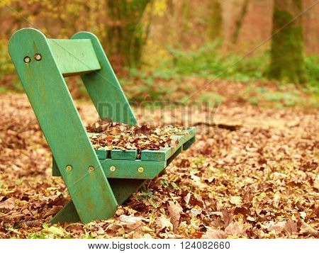 Sad abandoned green bench in park under dry maple and beech leaves.