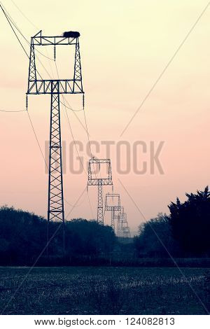 Electric power poles with square frame in foggy countryside within sunrise. Big stork nest on the construction.