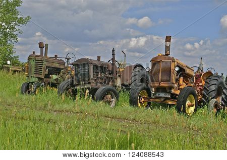 Lineup of old tractors in a salvage and junkyard.