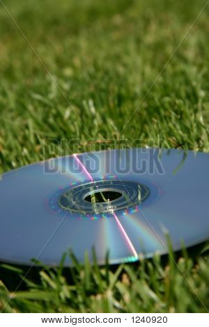 Silver Dvd On Green Grass