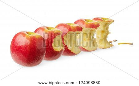 Fresh whole apple slightly bitten tested likely to be eaten nearly eaten already eaten isolated on white background. 