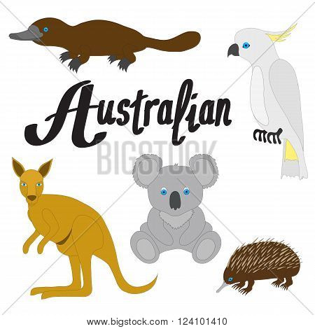 Australian animals . Isolated objects on a white background. Vector illustration.