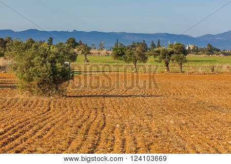 Plowed farm field with mountains on background, Northern Cyprus