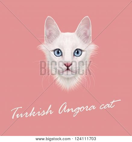 Cute face of white domestic cat with blue eyes on pink background.