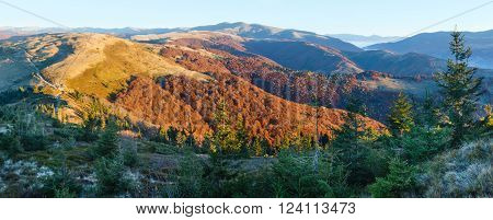 Sunrise in autumn Carpathian. Mountain top daybreak landscape with colorful trees on slope.