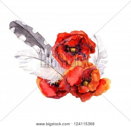 Watercolor poppy flowers and feathers. Floral watercolor drawing