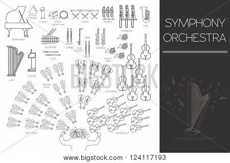 Musical instruments graphic template. All types of musical instruments infographic. Vector illustration