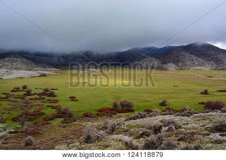 Dense clouds cover Nida's Plateau on the top of Psiloritis mountain in Crete.