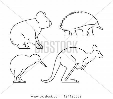 Vector line set of australian animals. Linear icon koalas kangaroos echidnas and kiwi.
